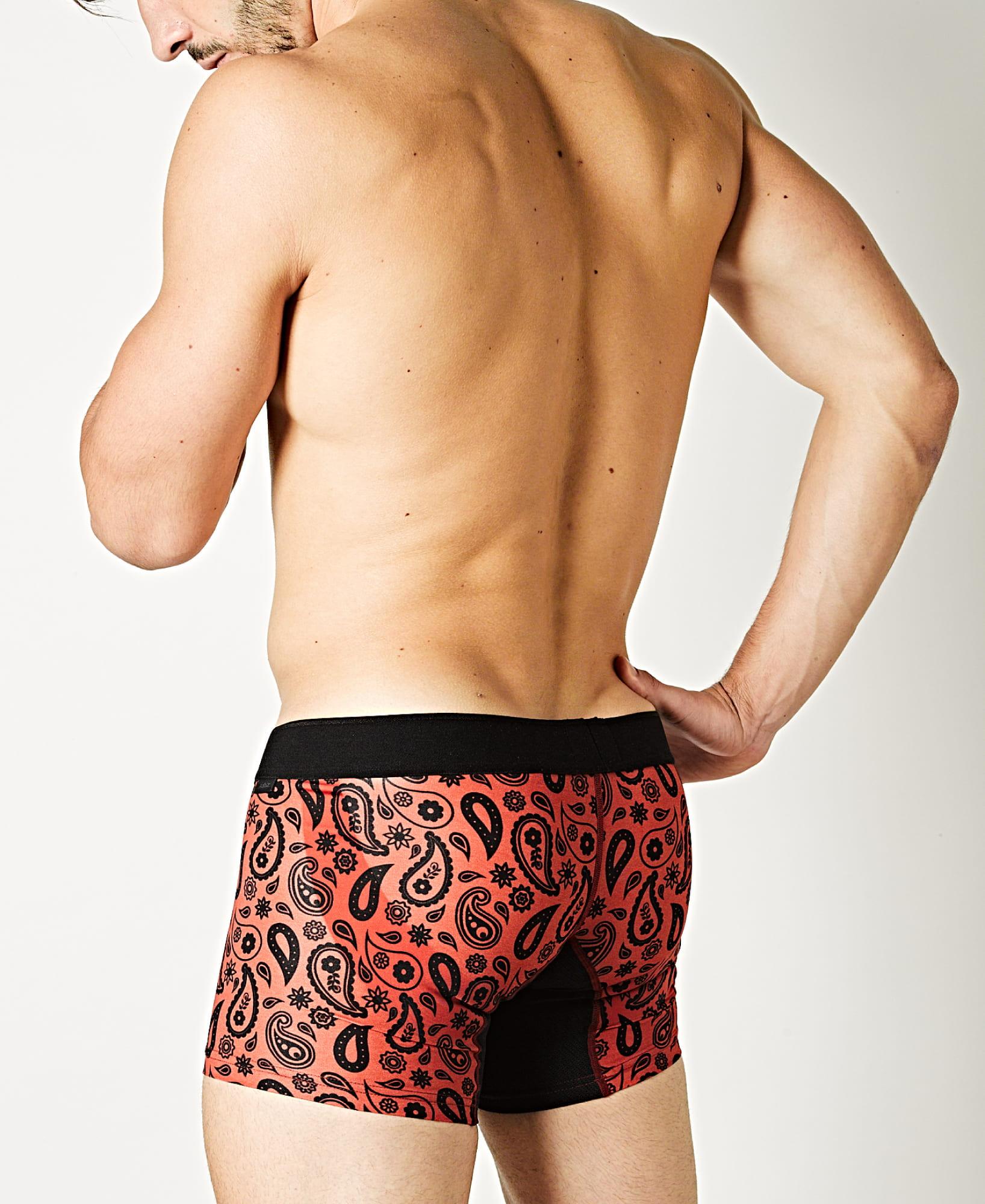 アンダーウェア 男性下着 | スタイリング メンズボクサーパンツ PAISLEY RED | モデル着用 ブランド詳細画像3